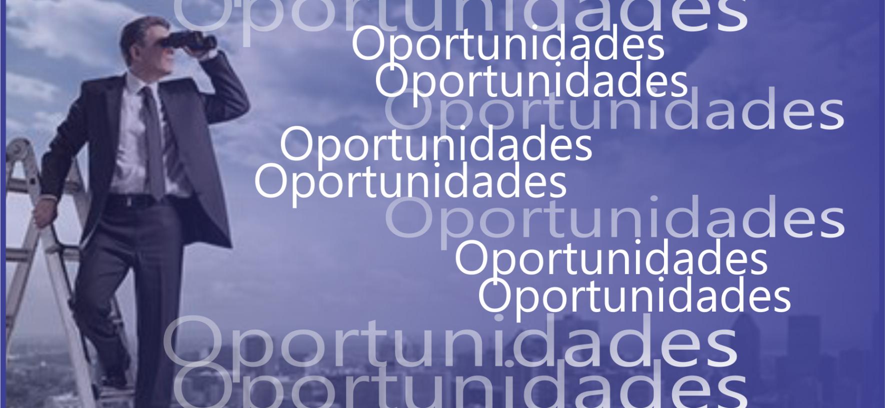 Você acha que possui as oportunidades certas, para alcançar o que almeja?